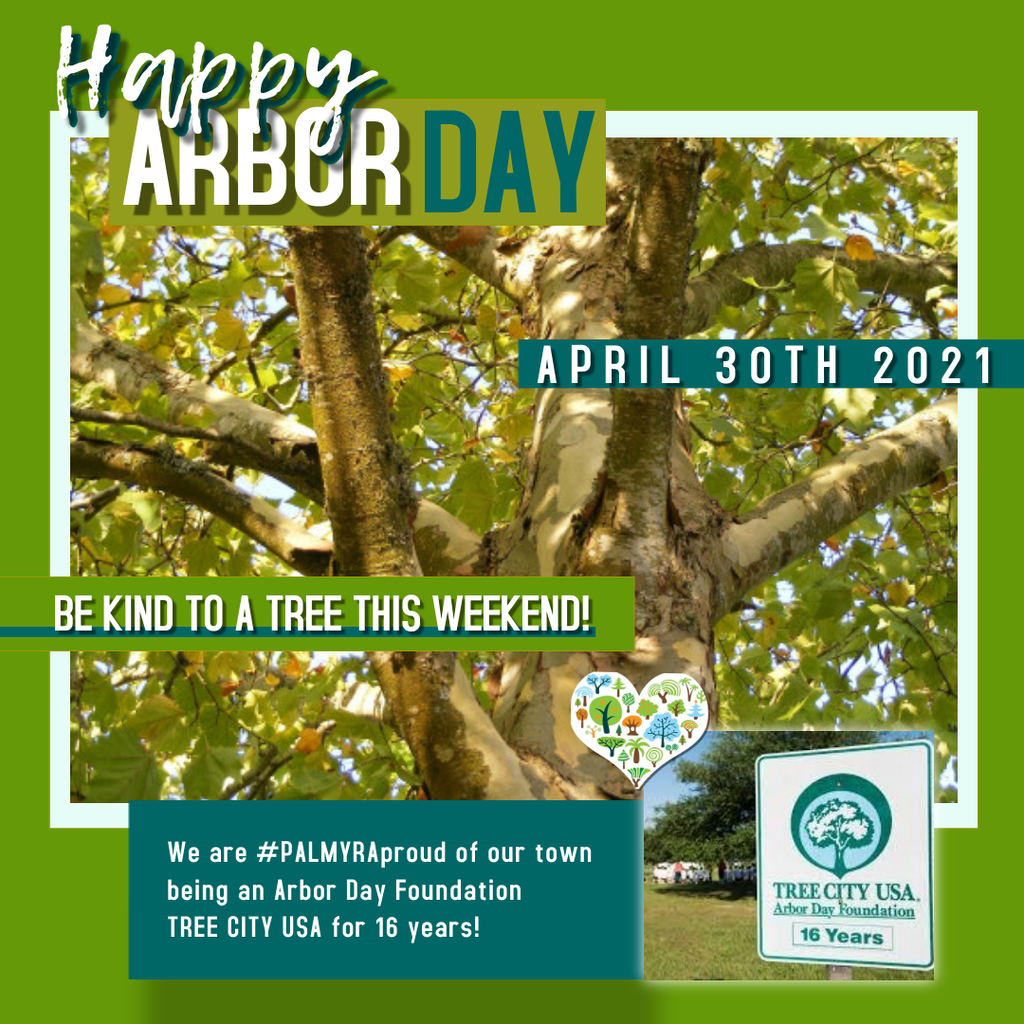 Arbor Day Tree photo