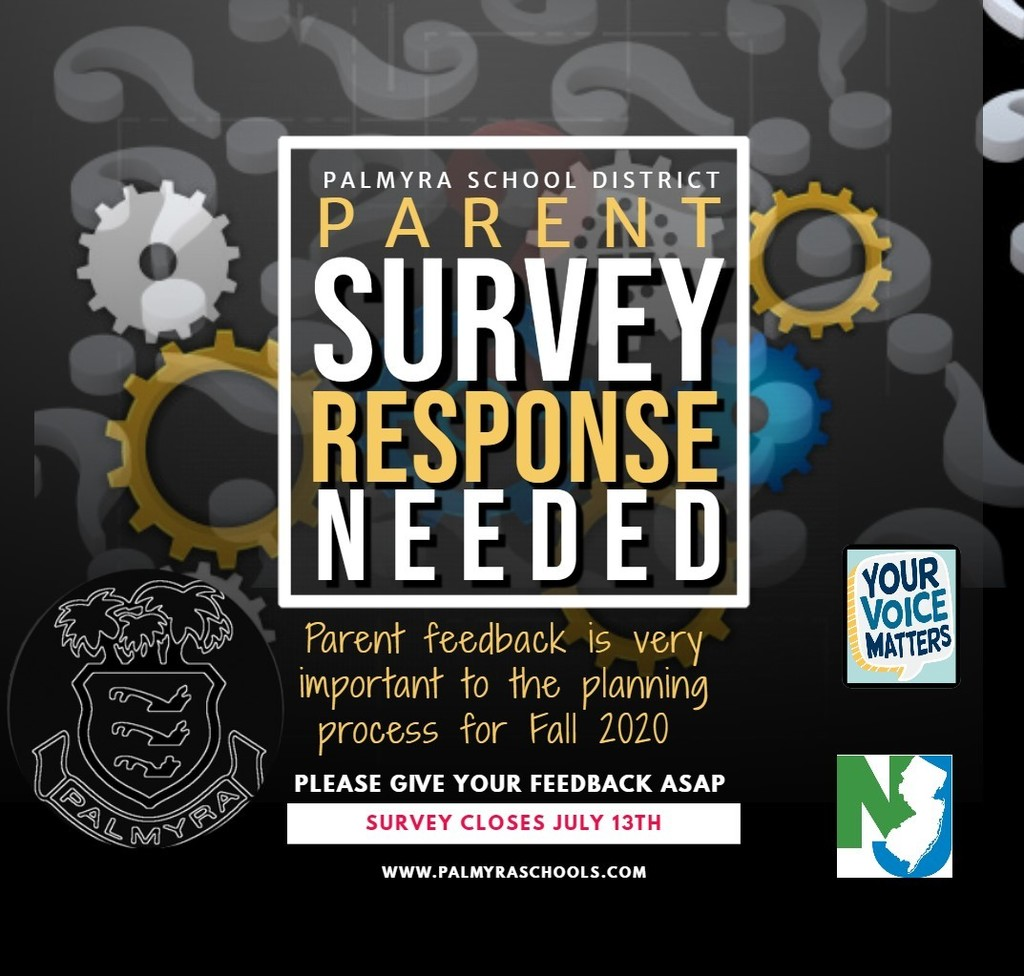 parent survey graphic